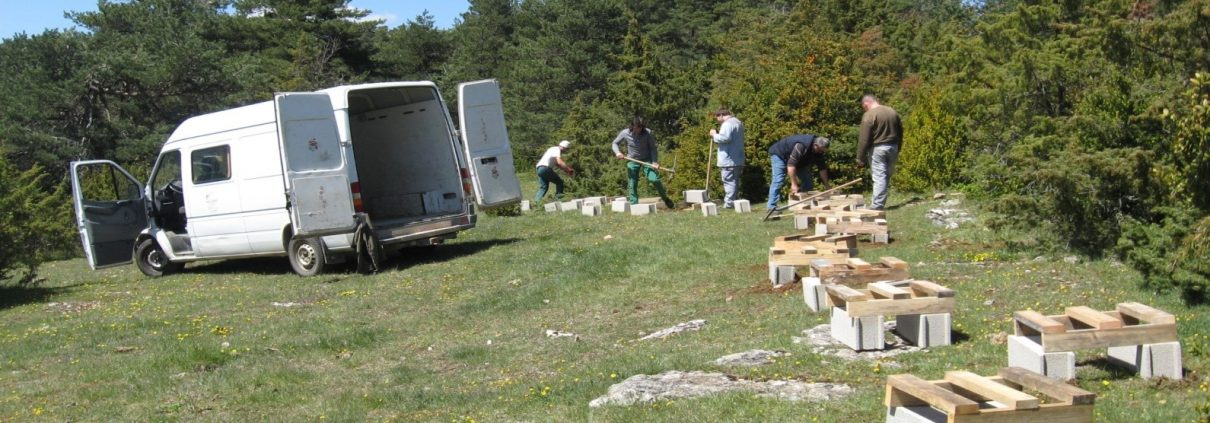 Installation des ruches à parrainer